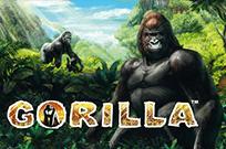 Бесплатны игровой аппарат Gorilla