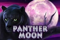 Panther Moon - выиграть реальные деньги на игровом автомате
