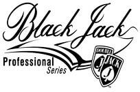 Играть на деньги в Blackjack Professional Series